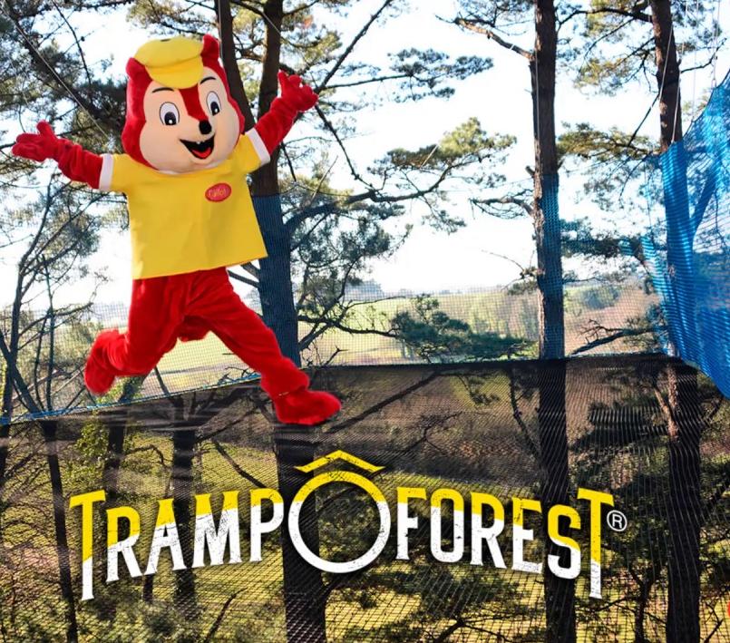 TranpoForest